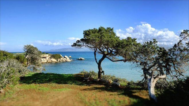 Национальный парк Акамас1