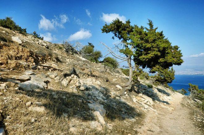 Национальный парк Акамас2