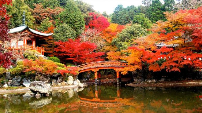daigo-ji-temple-kyoto-japan1