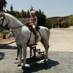 Лошади у Родосского аквапарка
